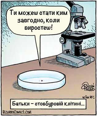 Комикс: Родительское напутствие стволовой клетке