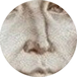 Поле зрения лупы: портрет на купюре, увеличение 20x