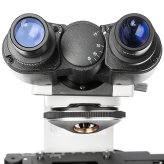 Окуляры бинокулярного микроскопа, вид со стороны глазной линзы
