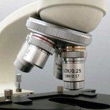 Объективы в револьверном устройстве биологического микроскопа