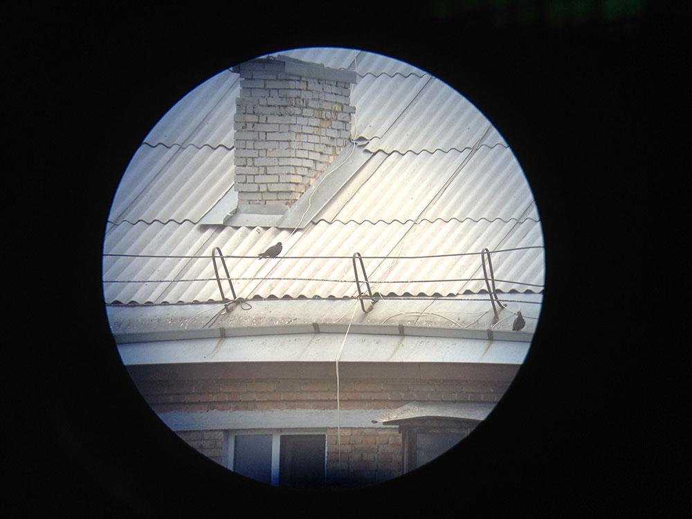 Вид через зрительную трубу KONUS Konuspot-80: увеличение 20x