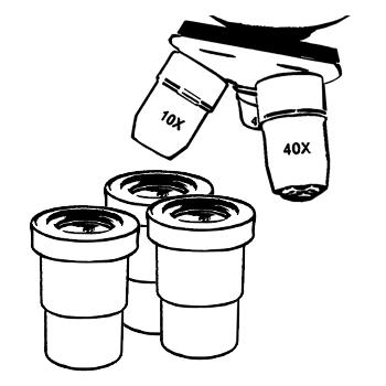 объективы и окуляры для микроскопов
