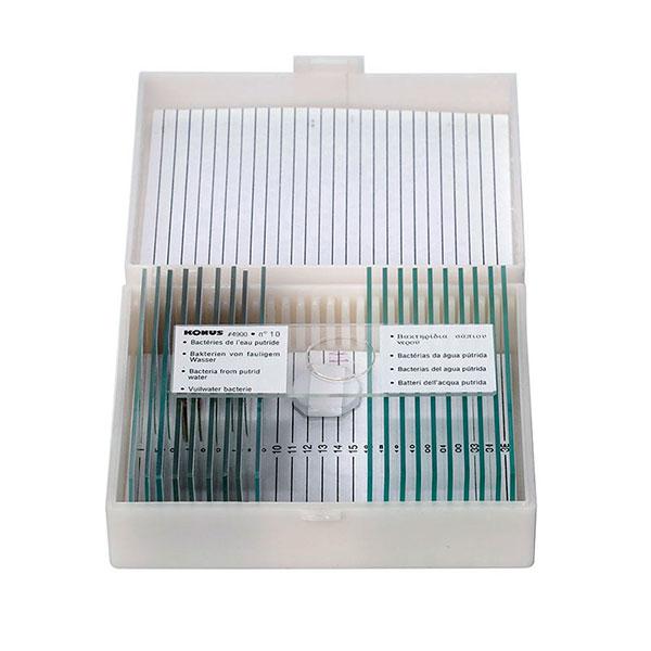 купить Набор микропрепаратов KONUS Человеческое тело: Патологические ткани (10 шт.)