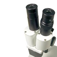 LEVENHUK 2ST Микроскоп по лучшей цене