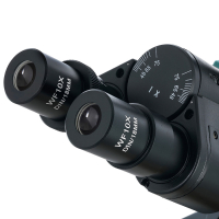 LEVENHUK 400T Микроскоп по лучшей цене