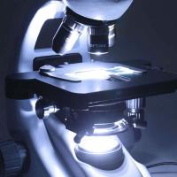 OPTIKA B-293PLI 40x-1000x Trino Infinity Микроскоп по лучшей цене