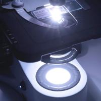 OPTIKA B-383PLi 40x-1000x Trino Infinity Микроскоп по лучшей цене