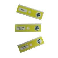 SIGETA Entrance Жизненные циклы растений (12 шт) Набор микропрепаратов по лучшей цене