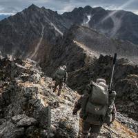 VORTEX Crossfire II 3-9x50 (BDC) Оптический прицел