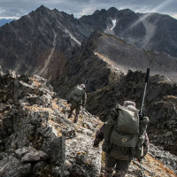 VORTEX Crossfire II 6-18x44 AO (BDC) Оптический прицел