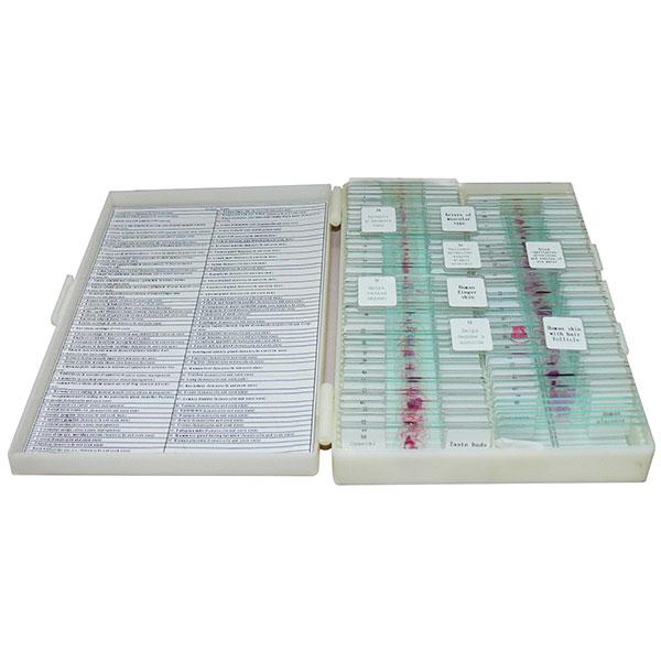 купить Набор микропрепаратов SIGETA «Гістологія, цитологія, ембріологія»