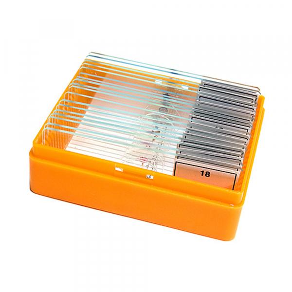купить Набор микропрепаратов LEVENHUK N18 NG
